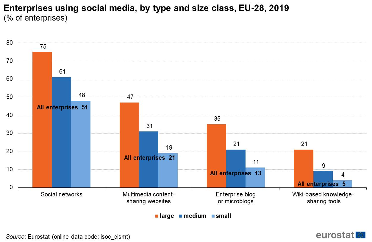 eurostat, statistiche riguardanti l'utilizzo dei social media